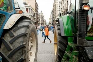 LaColmenaQueDiceSi_tractores
