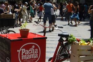 LaColmenaQueDiceSí_Pachamama