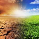 """""""El clima está cambiando. La alimentación y la agricultura también"""""""