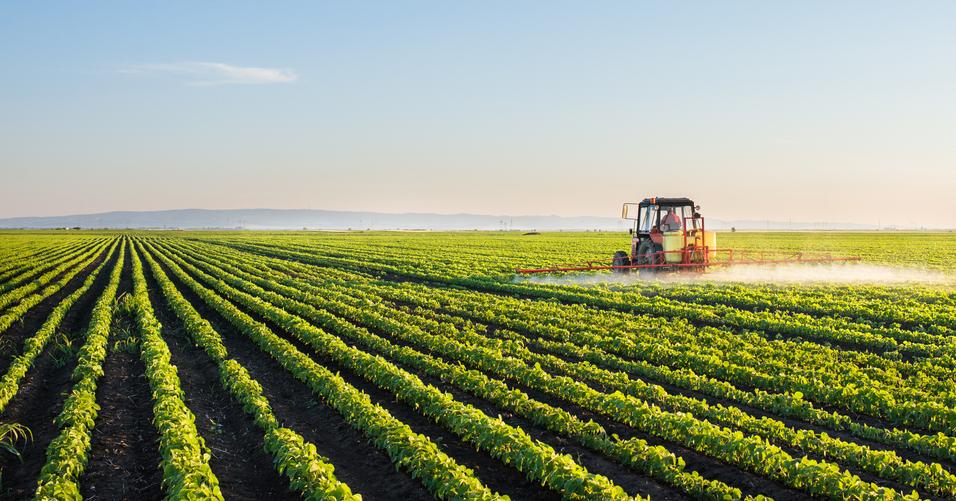 Los modelos industrializados de producir alimentos, aceleran la desertificación y el uso de pesticidas.