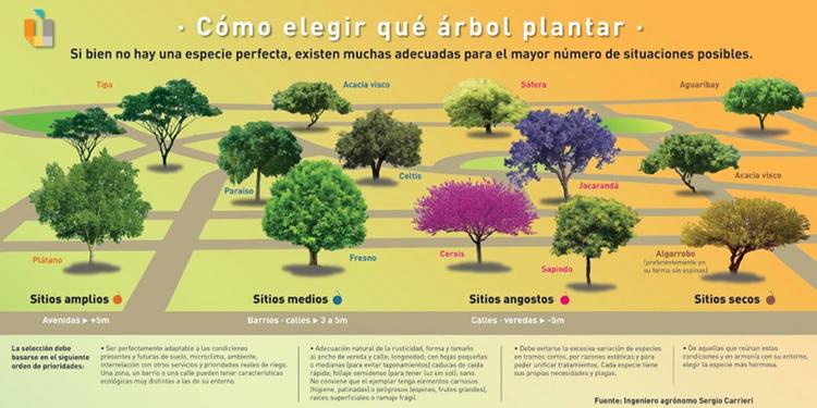 Fuente: Ingeniero agrónomo Sergio Carrieri